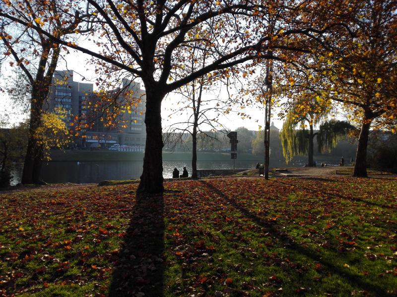 1511_boelckepark
